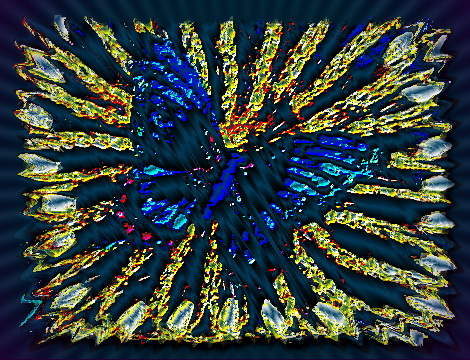 Schmetterling mit rahmen