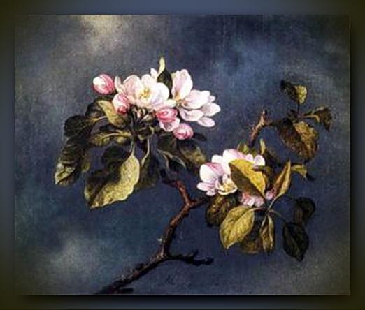 16.-Wochentipp-_04 5 apfelblüte rahmen