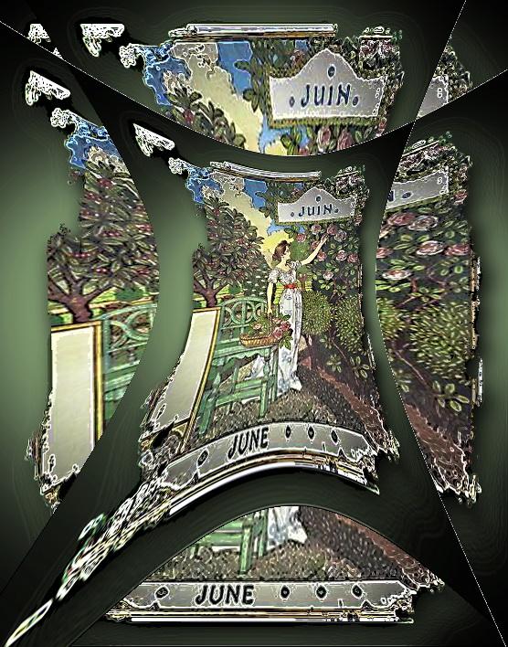 22.-Wochentipp_Juni titelbild